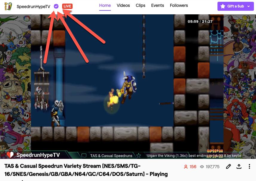 Speedrun Hype Got Partnered On Twitch